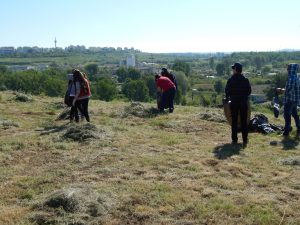 S-a încheiat ecologizarea zonei Castrului Roman. Este o iniţiativă lăudabilă, dar zona trebuie eliberată de acele ruine, spune prof. Brudiu