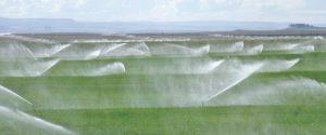spray-irrigation4-copy_article-main-image