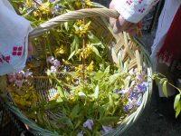 Obiceiuri şi tradiţii de Sărbătoarea Floriilor