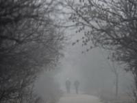 VREMEA: Crăciun atipic cu 15 grade, sfârşit de an cu temperaturi de iarnă