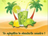 În acest weekend, răcoreşte-te cu o limonadă şi donează. Vino la festivalul LemonAid