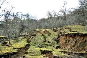 Alunecările de teren de la Izvoarele se amplifică. Pământul s-a deplasat cu un metru în numai câteva ore