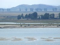Nivelul Dunării evoluează spre un nou record minim istoric