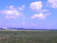 CL a aprobat închirierea terenului de peste Siret la 750 lei/ha. Se pare că celor de Agridelta Serv nu le convine chiria