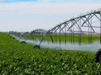 Statul îi susține financiar pe fermieri ca să își cumpere echipamente pentru irigații