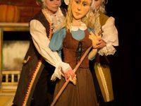 Bilete online la Teatrul Gulliver. Duminică, 12 noiembrie – CENUŞĂREASA