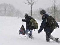 Cinci școli închise în localitățile din nordul județului