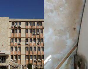 VIDEO. Viermi în baia unui salon de la Spitalul de Copii din Galați. DSP a declanșat o anchetă